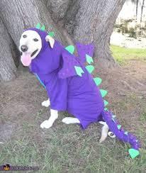 I am not a dog, I am a man trying to hump the dragon away.