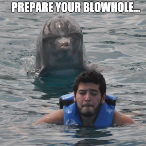 prepare-your-blowhole-dolphin-meme