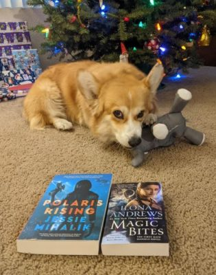 Pembroke Welsh corgi chewing on a dog toy with two book in the foreground. The books are Polaris Rising by Jessie Mihalik and Magic Bites by Ilona Andrews