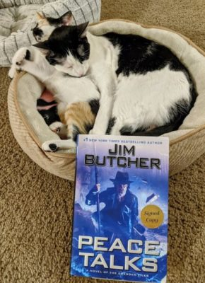 A cat and kitten curled up sleeping with a copy of the book Peace Talks by Jim Butcher in the foreground