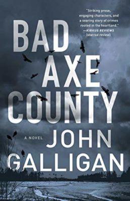 Bad Axe Book Cover